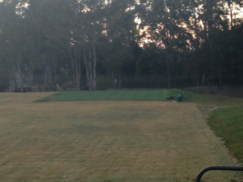 I took this photo on one of the cold mornings here in QLD. If you look closely you can see a mist above the green.