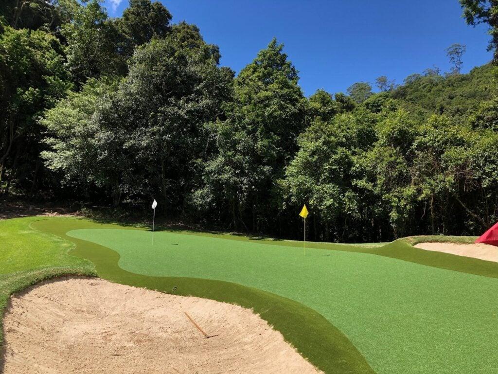 Amazing backyard synthetic golf green